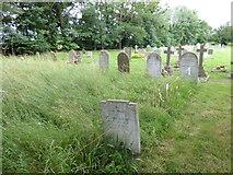 TM2692 : St. Margaret, Topcroft: churchyard (a) by Basher Eyre