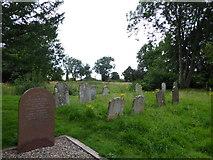 TM2692 : St. Margaret, Topcroft: churchyard (h) by Basher Eyre