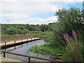 SE2336 : Pond with walkway at Rodley nature reserve by Stephen Craven