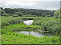 SE2336 :  Lagoon at Rodley nature reserve (2) by Stephen Craven