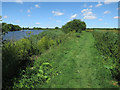 TG3305 : Path by the Yare by Hugh Venables