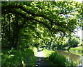 NT0676 : East along the Union Canal towpath by Mat Fascione