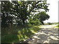 TM0574 : Bull Lane footpath to the B1113 Finningham Road by Adrian Cable