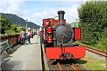 SH5639 : Russell the 10.30 train by Meg Hoare