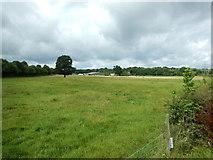 TQ1462 : Arbrook Farm by James Emmans