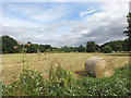 TQ2371 : Hay Bale on the Common by Des Blenkinsopp