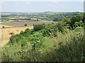 TL0630 : Wooded eastern slope of Sharpenhoe Clapper by Peter S