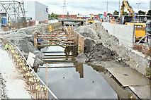 J3674 : Connswater works, Belfast - August 2016(3) by Albert Bridge