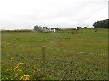 NZ4037 : Near Beech House, Wingate by Richard Webb