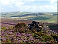 SK0063 : Rock outcrop on The Roaches by Graham Hogg
