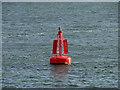NO4430 : Newcome Channel Marker, Tay Estuary by David Dixon