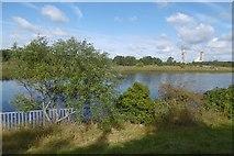 NZ4720 : River Tees by Richard Webb
