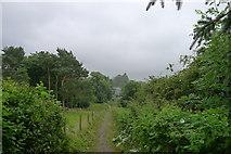 SD6592 : Footpath down to Sedbergh by Tim Heaton
