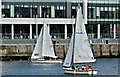 J3474 : Dinghies, River Lagan, Belfast (August 2016) by Albert Bridge