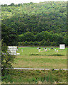 SK3056 : Cricket at Cromford Meadows by John Sutton