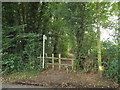 TQ4357 : Public footpath near Biggin Hill by Malc McDonald