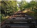 SE3030 : Wooden railway sleepers by Stephen Craven