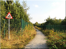 SE3030 : Beware of trains by Stephen Craven