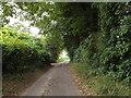 TM0175 : Calkewood Lane, Wattisfield by Geographer