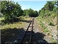 SX3184 : Launceton Steam Railway - Hunts Crossing Station by Chris Allen