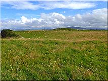 D0644 : View east from Ballaghacravey picnic area by Mick Garratt