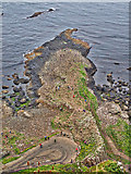 C9444 : Giant's Causeway by Mick Garratt