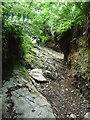 SC2378 : Steep rocky slope, Sound Road by Christine Johnstone