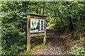 SN5982 : Parc Natur Penglais  by Ian Capper