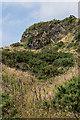 SN5882 : Parc Natur Penglais  by Ian Capper