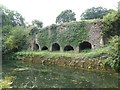 ST0718 : The Waytown Lime Kilns by the Grand Western Canal by David Smith
