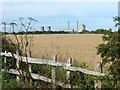 SK8184 : Rustic fence on Knaith Hall Lane by Graham Hogg