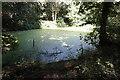 SE3005 : Pond in Silkstone Fall by Ian S