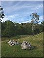 SD4674 : Limestone boulders, Silverdale by Karl and Ali