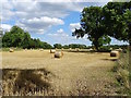 SK4332 : Straw bales by the Derwent by Ian Calderwood