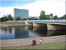 SX9192 : Bridge over River Exe by Des Blenkinsopp