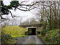 SW8056 : A3075 Bridge by Nigel Mykura