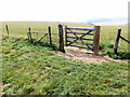 TQ4805 : Gate to Footpath on South Downs Way by PAUL FARMER