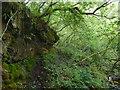 NS3182 : Rock face in Garrawy Glen by Lairich Rig