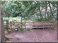 SU9587 : Stile on public footpath into Dorney Wood by David Hawgood
