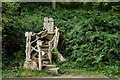 SU9941 : Winkworth Arboretum by Peter Trimming