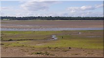 NT6378 : River Tyne estuary by Richard Webb