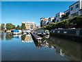 TL3213 : Houseboats, River Lea, Hertford, Hertfordshire by Christine Matthews