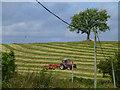 H4657 : Cutting grass, Aghafad by Kenneth  Allen