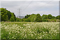 SP3880 : Power lines heading to or from University Hospital, Walsgrave, Coventry by Robin Stott
