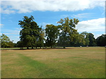 TQ1773 : Marble Hill Park by James Emmans