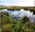 SJ9569 : Upland pond by Andy Stephenson