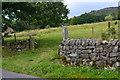 SK2475 : Field entrance on Riddings Lane by David Martin
