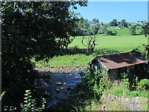 NY6366 : The confluence of Poltross Burn and the River Irthing by Mike Quinn