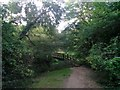 SZ0696 : Kinson: approaching the footbridge at Millhams Mead by Chris Downer