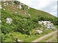 NR7376 : Rocks and hillside by Jonathan Wilkins